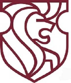 JVFS small logo