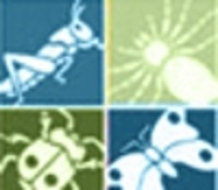 Logo showing different insects and an arthropod against a blue and green background.