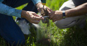a close up of the hands of two people kneeling to collect a soil sample in a plastic bag