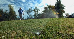 Turfgrass with a sprinkler in the foreground and a man approaching the camera from the back left of frame. UF/IFAS File Photo.