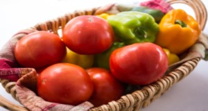 Basket of fresh tomatoes and bell peppers. UF/IFAS file photo.