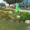 A bioretention area.