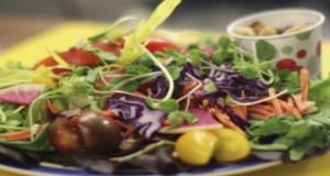Microgreen salad  Photo Credits:  UF/IFAS Photo by Robert Annis