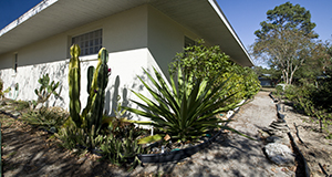 Photo of house with drought-tolerant plants planted near the house and a permeable-surface path around it.
