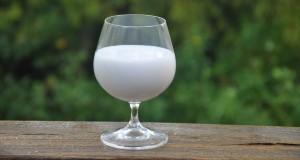 A tulip glass half full of coconut milk. Credit: Lincoln Zotarelli, UF/IFAS