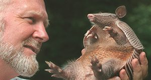 Joe Schaefer and an armadillo UF/IFAS photo