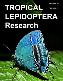 Cover image of Tropical Lepidoptera, showing an image of a light blue butterfly.